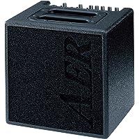 AER アコースティック ギター アンプ 40W Alpha