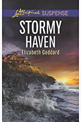 Stormy Haven (Coldwater Bay Intrigue Book 2) Kindle Edition