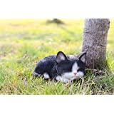 Hi- Line Gift 87699-B Kitten Sleeping Black & White Cat Statue