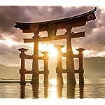 世界遺産 QHD(1080×960) 厳島神社の大鳥居