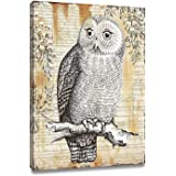 """ArtKisser Original Painting of Owl Pictures on Canvas Wall Art Framed Ready to Hang for Bedroom Living Room Decoration 12"""" Wx"""