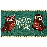 DII Indoor/Outdoor Natural Coir Easy Clean Seasonal Doormat, 18x30, Hoots There