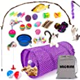 Cat Toys Kitten Toys 34pcs Assorted Cat Tunnel Catnip Fish Feather Teaser Wand Fish Fluffy Mouse Mice Balls and Bells Toys St