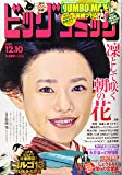ビッグコミック 2020年 12/10 号 [雑誌]