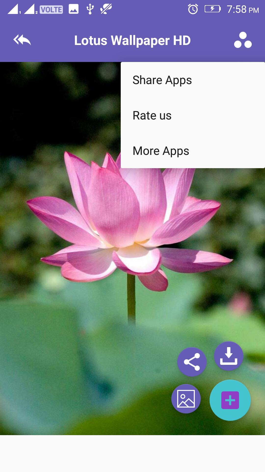 amazon co jp lotus 4k wallpaper android アプリストア