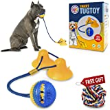 Gnawtee Pets Smart Dog Tug Toy with Double Suction Cups - Durable Teething Toy for Puppies and Stimulating Dog Toy for Aggres