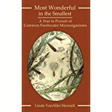 Most Wonderful in the Smallest: A Year in Pursuit of Common Freshwater Microorganisms
