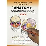 カラースケッチ 解剖学