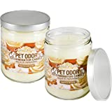 Maven Gifts: Specialty Pet Products Creamy Vanilla 13 Oz. Pet Odor Exterminator Candle 2-Pack