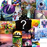 4 Pack Blind Box 5D DIY Diamond Painting Kits for Adults Random Diamond Paintings Picture for Home Decoration