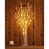 Hairui Tabletop Lighted Birch Willow Branch Decor with Dew Drop Lights 32in 100LED, Pre-lit Twig Branch Lights Battery Powere