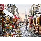 WONZOM 油絵 数字キットによる絵画 塗り絵 大人 手塗り DIY絵 デジタル油絵 40x50センチ パリ(フレーム付き)