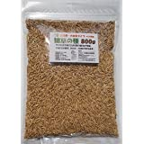 仁達食品 猫草の種 大容量タイプ800g入り 【約1.3L】(農薬未使用ですので、ペット用への使用も安心!)大量にご使用される方に最適! 4号植木鉢で約40回の栽培が可能です!