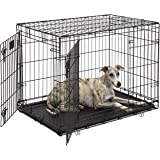 "Dog Crate 1636DDU| Midwest Life Stages 36"" Double Door Folding Metal Dog Crate 