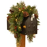 National Tree 36 Inch Feel Real ® Colonial Mail Box Swag with 8 Pine Cones, 8 Red Berries and 35 Warm White Battery Operated