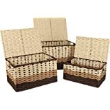 HomeGrove Wicker Storage Baskets with Lids - Closet Storage Basket with Lid - Decorative Storage Bins with Lids - Stackable S