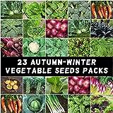 Mixed Autumn Winter Heirloom Vegetable 2200 Seeds 23 Packets Cool Season Bulk
