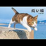 飛び猫 (角川マガジンズ)