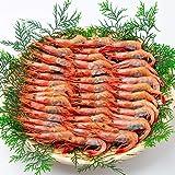 OWARI 大和甘海老 刺身用 国産(日本海) 1.2kg (600g x 2P) 約90尾