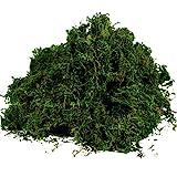 Byher Artificial Moss Fake Green Grass for Centerpieces Home Kitchen Garden Decor (3.5OZ, Fresh)