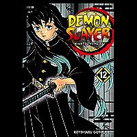 Demon Slayer: Kimetsu no Yaiba, Vol. 12: The Upper Ranks Gat…