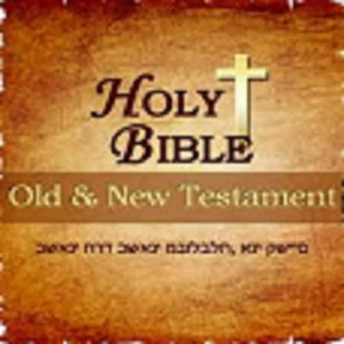 bible and old testament The prophets of israel viewed as a whole their designation the first division of the old testament was known as the law with the second being called the former prophets, but these included four books which have already been outlined—joshua, judges, samuel, and.