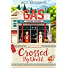 Crossed By Death (Stitches In Crime Book 1)