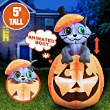 5 ft Tall Halloween Inflatable Animated Kitty Cat On Pumpkin Inflatable Yard Decoration with Build-in LEDs Blow Up Inflatable