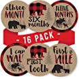 16 Woodland Bear Baby Milestone Stickers, Rustic Winter 12 Monthly Photo Picture Props For Boy or Girl Infant Onesie, 1st Yea