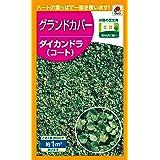 タキイ種苗(Takii Shubyo) グランドカバー ダイカンドラ(コート) 1㎡ BLG609EBF