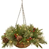 National Tree 20 Inch Feel Real Colonial Hanging Basket with Cones, Red Berries and 50 Warm White Battery Operated LED Lights