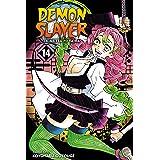 Demon Slayer: Kimetsu no Yaiba, Vol. 14: The Mu Of Muichiro (English Edition)