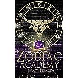 Zodiac Academy 4: Shadow Princess