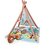 Skip Hop Camping Cub Activity Baby Gym, Multi