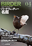BIRDER (バーダー) 2020年 04月号 [雑誌]