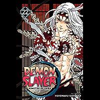 Demon Slayer: Kimetsu no Yaiba, Vol. 22: The Wheel Of Fate…