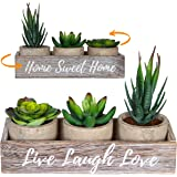 3 Artificial Succulent Plants with Pots and with Rustic Planter Box – Realistic Greenery Mini Potted Faux Plant Arrangements