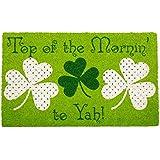 DII Fun Greetings Home Décor Indoor/Outdoor Natural Coir Fiber Doormat, 18x30, Top of The Mornin' to Yah