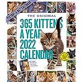 2022 365 Kittens-A-Year Calendar