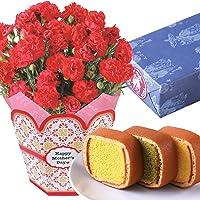 母の日ギフト カーネーション 文明堂カステラ巻き 花とスイーツ 5号鉢 (赤)