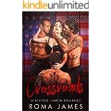 Crossroads: A Reverse Harem Romance (Power of Love Book 2)