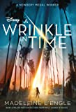 A Wrinkle in Time (Wrinkle in Time Quintet, 1)