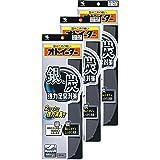 【まとめ買い】銀と炭のオドイーター インソール フリーサイズ20cm~28cm 1足×3個