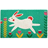 DII CAMZ11257 Indoor/Outdoor Natural Coir Easy Clean Rubber Non Slip Backing Entry Way Doormat for Patio, Front, Weather Exte