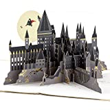 Hallmark Signature Paper Wonder Pop Up Birthday Card (Harry Potter)