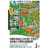 カラー版 「水」が教えてくれる東京の微地形の秘密 (じっぴコンパクト新書)