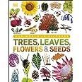 Trees, Leaves, Flowers & Seeds: A visual encyclopedia of the plant kingdom