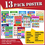 Educational Posters for Kids and Toddlers STEM APPROVED, Pack of 13 Large Laminated (11 X 17) Early Learning Posters for Pres