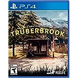 btf Trüberbrook, PS4