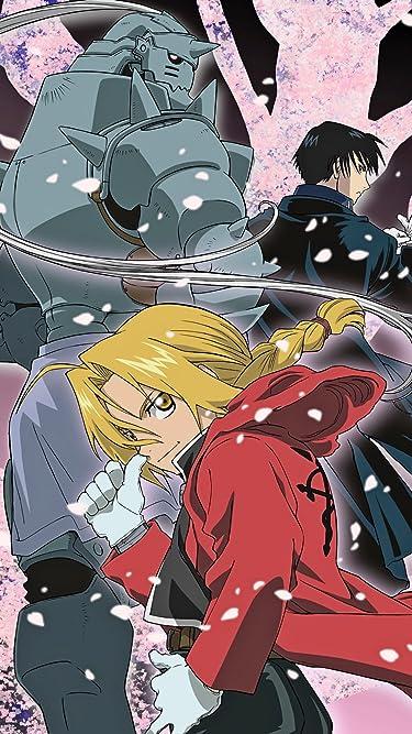 2009年に放送されたテレビアニメ - アルフォンス・エルリック,エドワード・エルリック,ロイ・マスタング